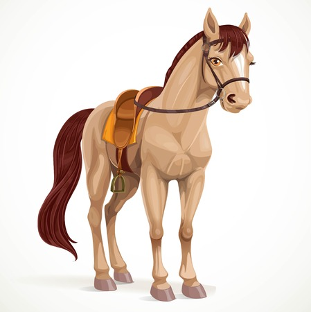 Beige horse saddled and in harness isolated on a white background