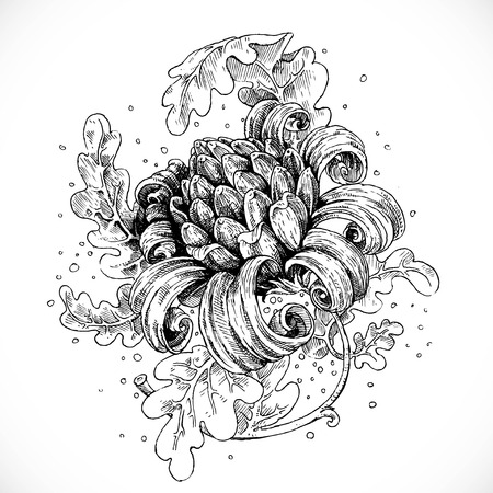 pencil drawing: Black and white drawing fantasy flower and leaves Illustration
