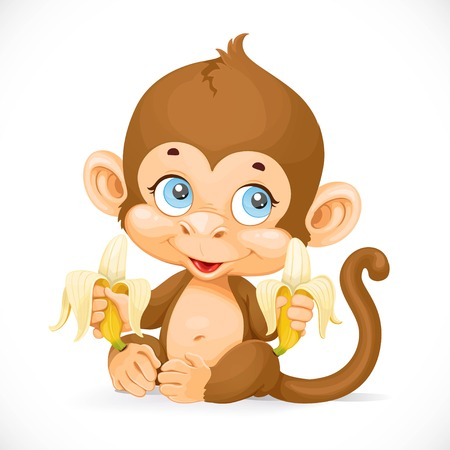 baby animal: Cute baby monkey with banana isolated on a white background