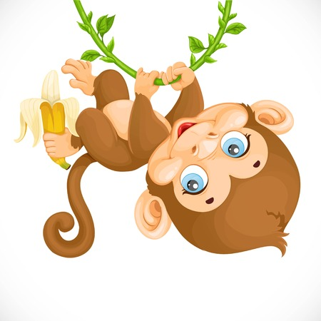 child drawing: Cute baby monkey with banana hanging on the vine isolated on a white background