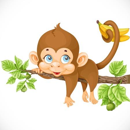귀여운 원숭이 게으르게 분기에 누워 바나나의 꼬리를 보유하고