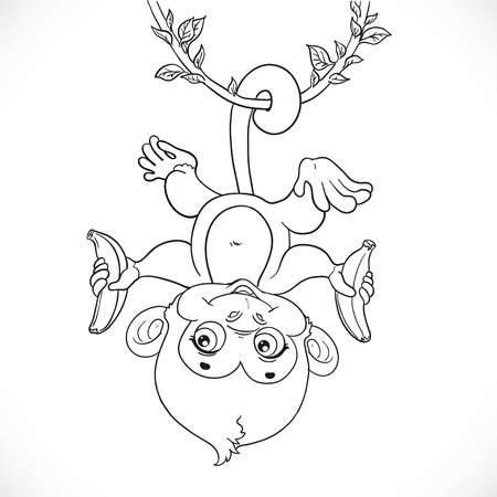 creeper: Cute baby monkey with banana hanging on the liana outlined isolated on a white background