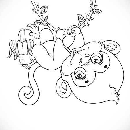 outlined isolated: Cute baby monkey with banana hanging on the vine outlined isolated on a white background Vectores