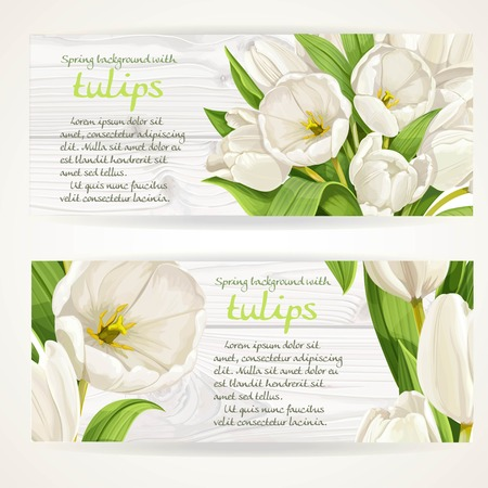 Two horizontal banners with white tulips on a white wood background