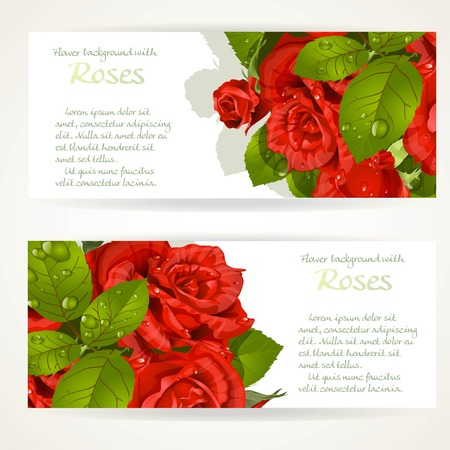 pearls and threads: Two horizontal banners with red roses bouquet on a white background Illustration