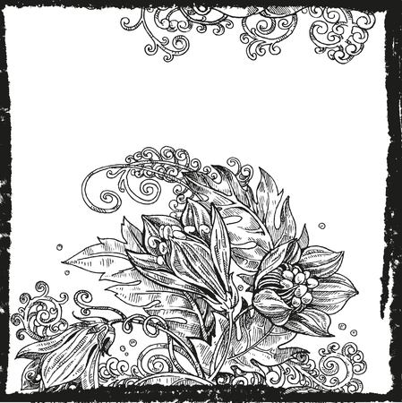 graphically: Detailed vector background from flowers graphically sleep-grass and fern black and white