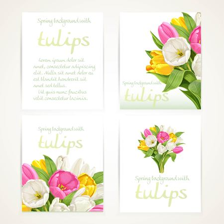 botanical garden: Pink and white tulips on four vertical blank banners set on a white background Illustration