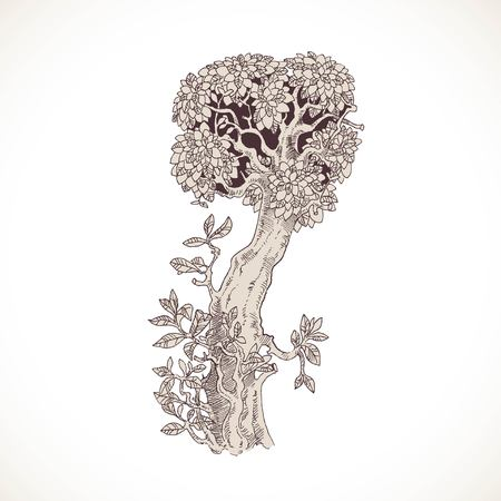 the thick forest: Magic forest hand drawn from trees by a vintage font - I Illustration