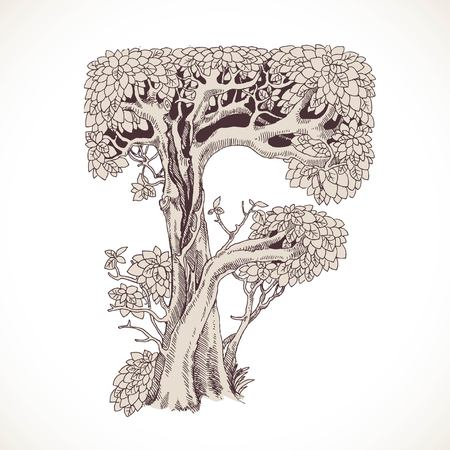 mysterious: Magic forest hand drawn from trees by a vintage font - F Illustration