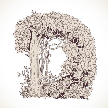 the thick forest: Magic forest hand drawn from trees by a vintage font - D Illustration