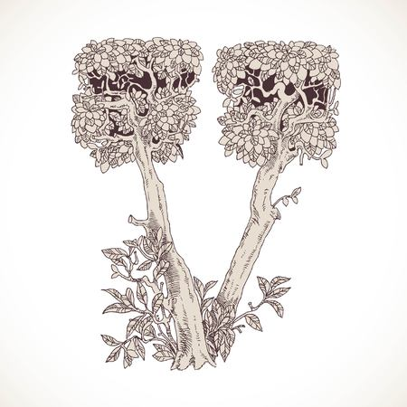 thick forest: Magic forest hand drawn from trees by a vintage font - V