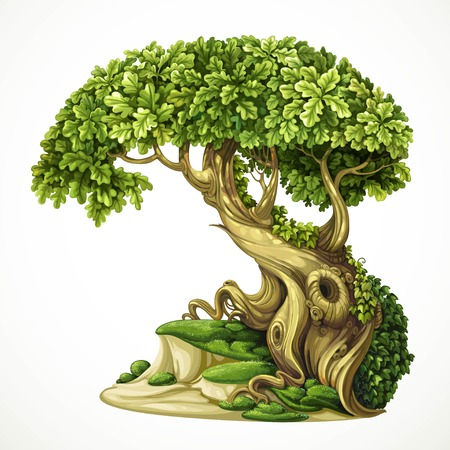Old fairy ivy-covered oak tree on the hill with moss. Detailed illustration isolated on white background