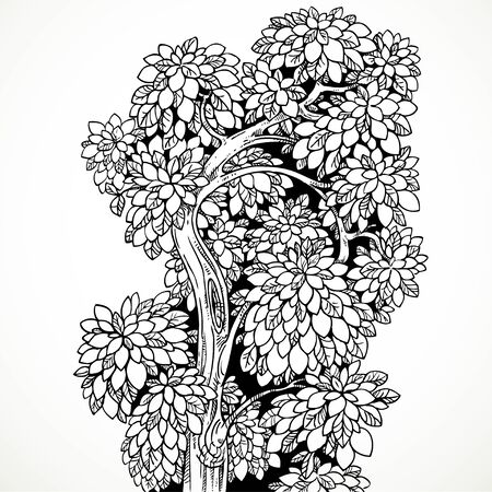 graphically: Graphically drawing black ink tree with graceful curved bushy branches isolated on white background