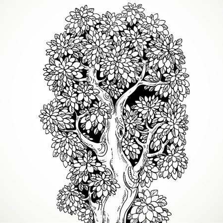 graphically: Graphically drawing black ink big old tree  isolated on white background