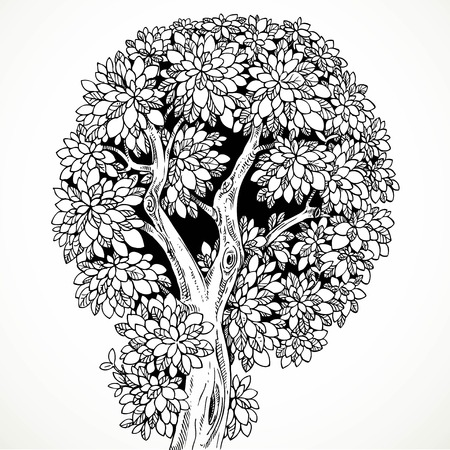 graphically: Graphically drawing tree with krone round isolated on white background