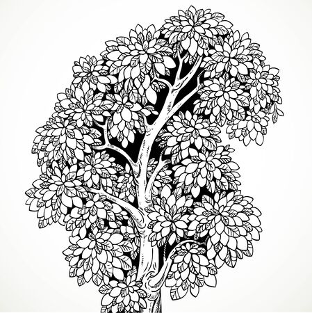 graphically: Graphically drawing black ink tree with bushy branches isolated on white background Illustration