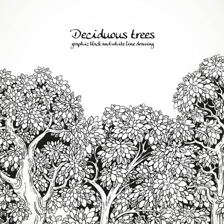 graphically: Background with graphically drawing trees black and white
