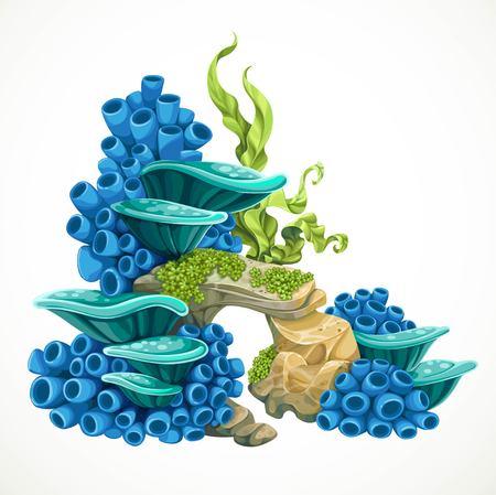 Steine ??mit Schwämmen und Anemonen Teil des Meeresbodens für Aquariendekoration oder als separates Element isoliert auf weißem Hintergrund