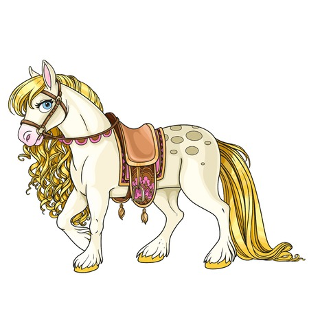 domesticated: Cute white horse with golden mane harnessed to a saddle isolated on a white background