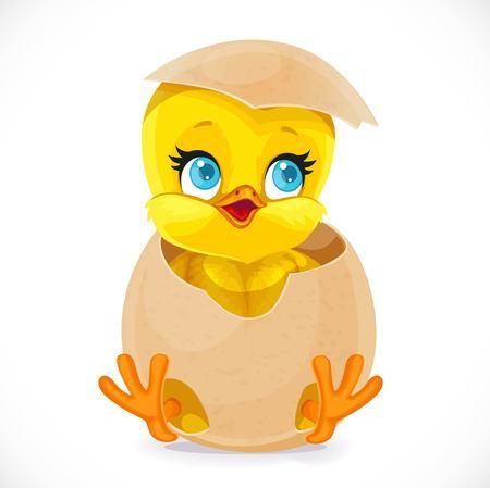 Pulcino carino piccolo cartoon schiusa da un uovo isolato su uno sfondo bianco Vettoriali