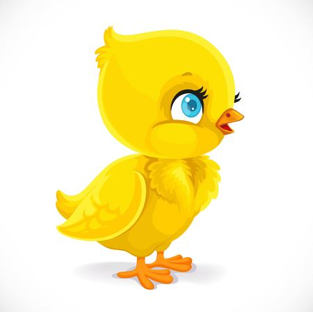 Little baby chick isolated on a white background Illustration