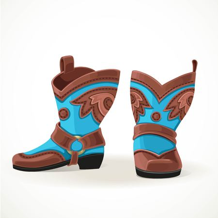Embroidered cowboy boots from brown and blue leather.