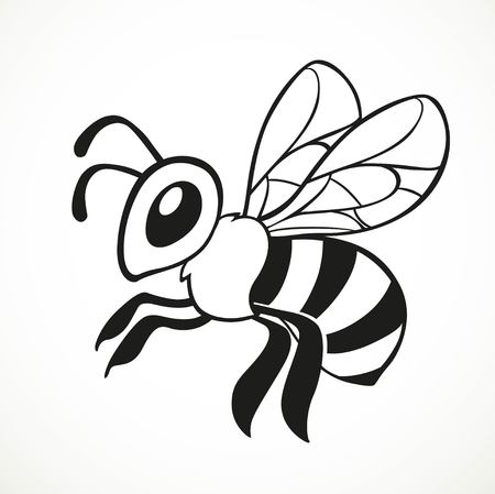 Bee flies line graphic arts isolated on a white background