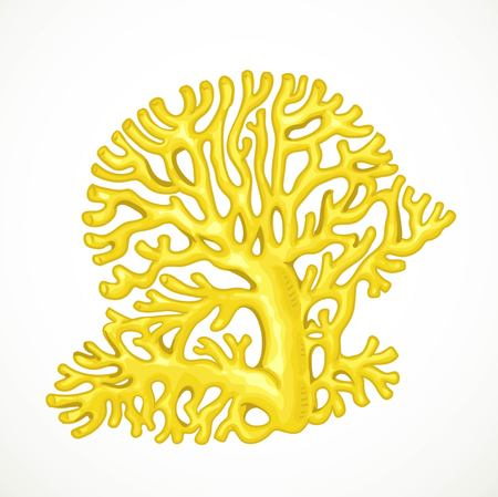 Yellow corals sea life object isolated on white background