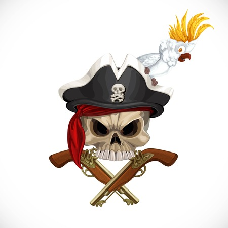 sea robber: Jolly Roger in pirat hat with white parrot and with pistols isolated on a white background