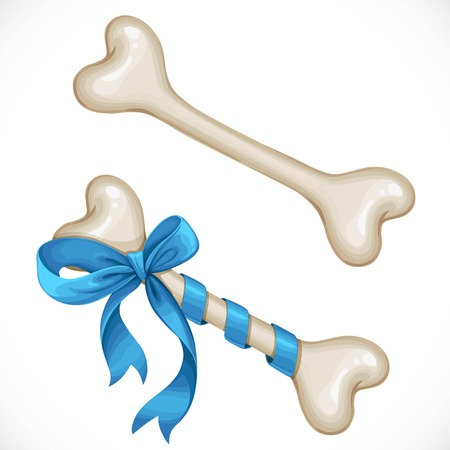 Bone for dog bandaged with gift bow and without bow object isolated on a white background
