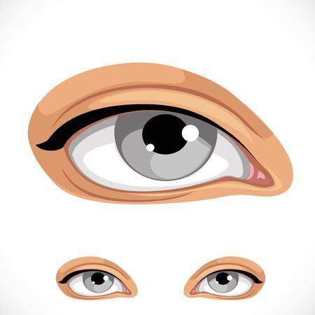 Realistisch menselijk oog dat op een witte achtergrond wordt geïsoleerd Stock Illustratie
