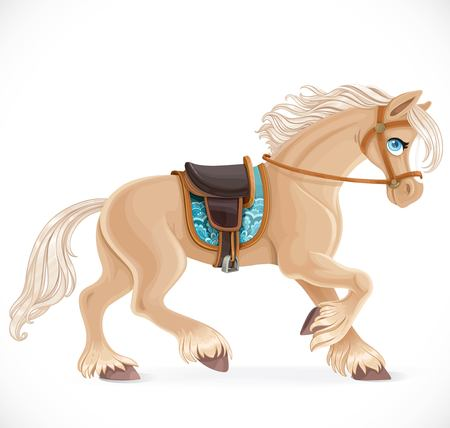 Cute horse harnessed isolated on a white background