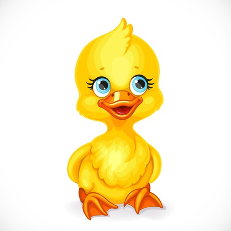 Cute little yellow duckling sit on floor isolated on white background
