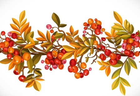 葉と枝の横の秋の花輪。