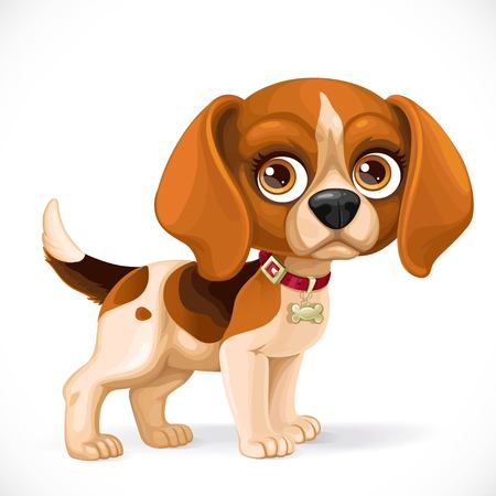 lop: Cute cartoon lop-eared beagle little puppy isolated on a white background