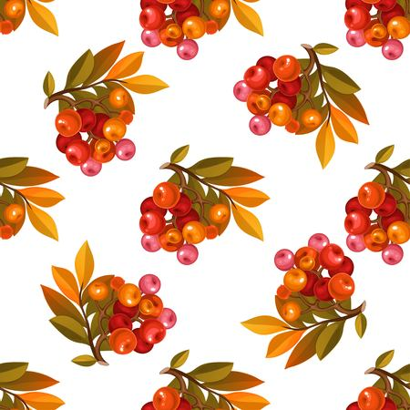 Seamless pattern from red berries on white background
