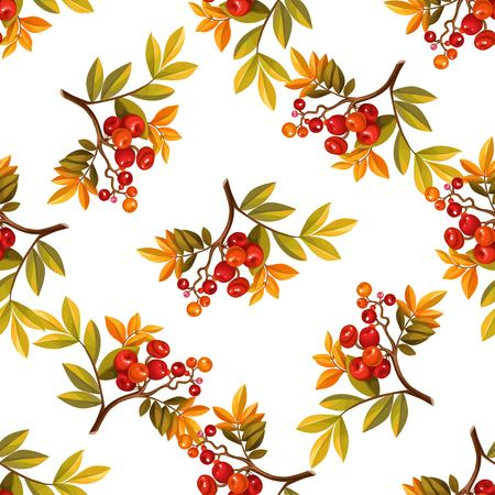 Seamless pattern from autumn branches with leaves and red berries on white background