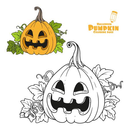 Lantern From Pumpkin Color And Outlined For Coloring Page Royalty ...