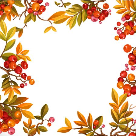 Frame from branches with leaves and red berries isolated on white background