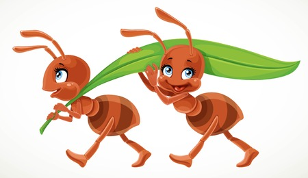 Two cute cartoon ant carry green juicy blade of grass isolated on a white background Stok Fotoğraf - 95279143