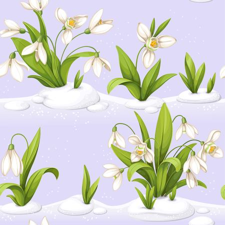 Flowers with snowdrop repetitive seamless illustration.