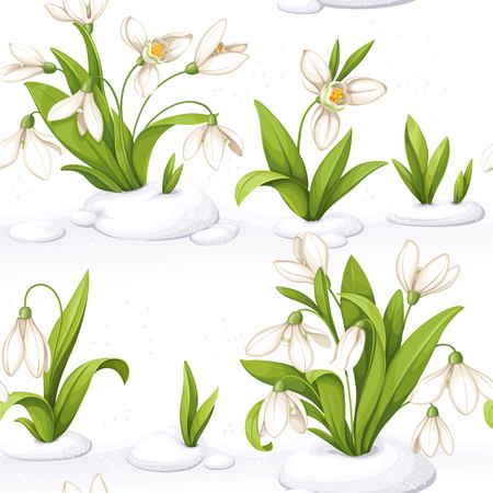 Flowers with snowdrop in repetitive seamless illustration.