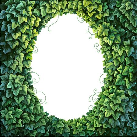 Oval frame for text decoration Enchanted Forest from green ivy on a white background. Çizim