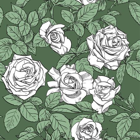Seamless pattern from white roses on green background