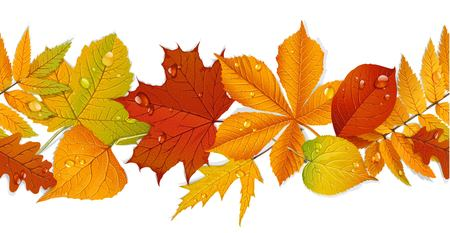 Seamless curb of autumn leaves isolated on white background Illustration