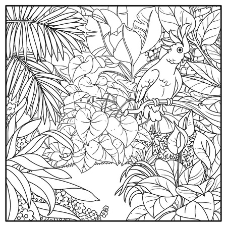 Wild jungle with cockatoo parrot perched on branch black contour line drawing for coloring on a white background Illustration