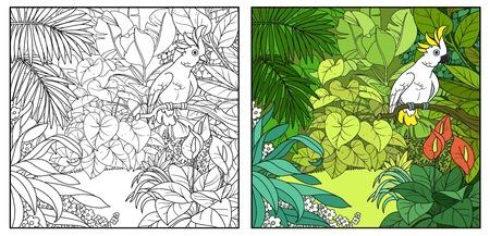 Wilde jungle met kaketoe papegaai zat op tak kleur en zwarte contourlijntekening om in te kleuren op een witte achtergrond