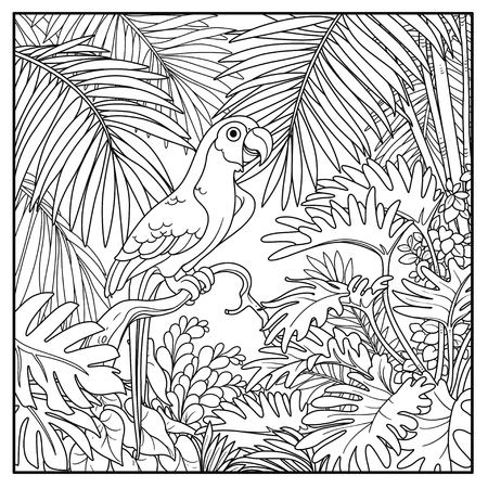 Wild jungle with parrot of macaw sit on branch black contour line drawing for coloring on a white background