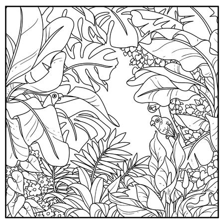 Wild jungle with parrots of the breed rosy-cheeked lovers black contour line drawing for coloring on a white background Illusztráció