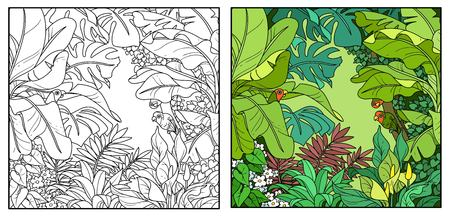 Wild jungle with parrots of the breed rosy-cheeked lovers color and black contour line drawing for coloring on a white background